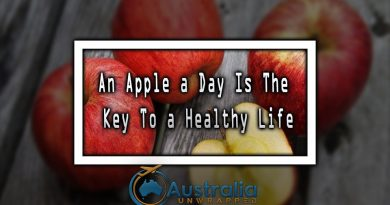 An Apple a Day Is The Key To a Healthy Life