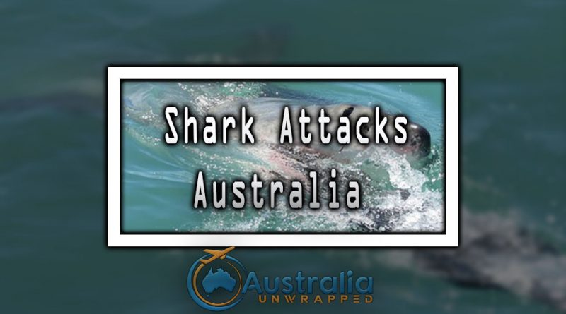 Shark Attacks Australia