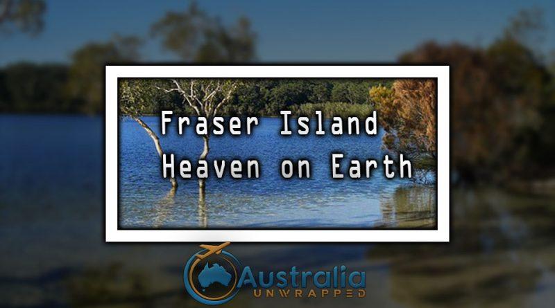 Fraser Island - Heaven on Earth