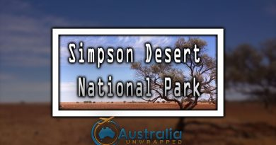 Simpson Desert National Park