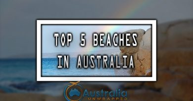 TOP 5 BEACHES IN AUSTRALIA