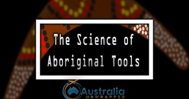 The Science of Aboriginal Tools