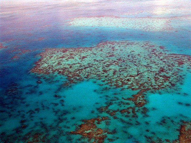 great-barrier-reef-261720_640