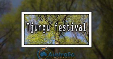 Tjungu festival