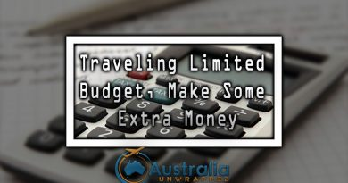 Traveling Limited Budget, Make Some Extra Money