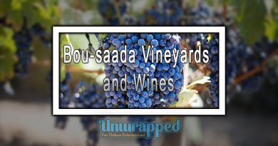 Bou-saada Vineyards and Wines
