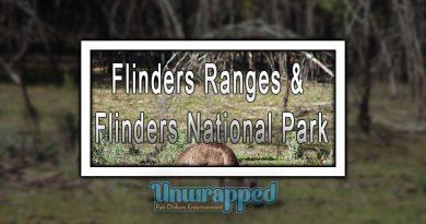 Flinders Ranges & Flinders National Park