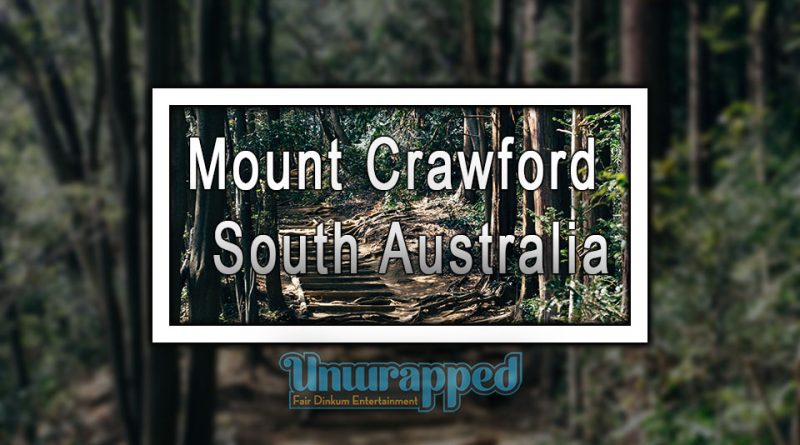 Mount Crawford Forest - South Australia