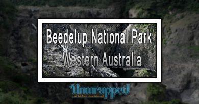 Beedelup National Park - Western Australia