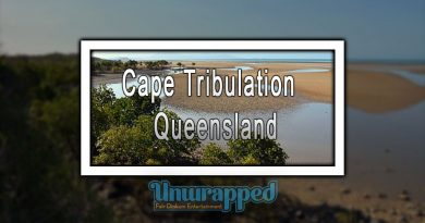 Cape Tribulation - Queensland
