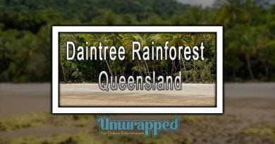 Daintree Rainforest - Queensland