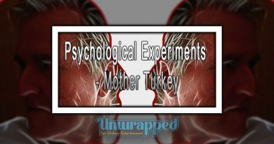 Psychological Experiments - Mother Turkey