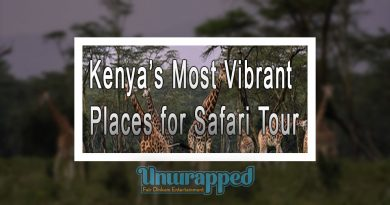 Kenya's Most Vibrant Places for Safari Tour