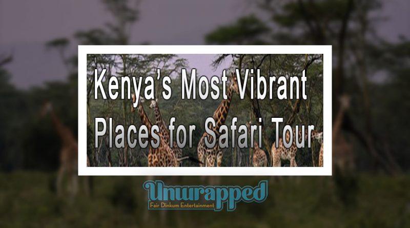 Kenya's Most Vibrant Places for Safari Tour