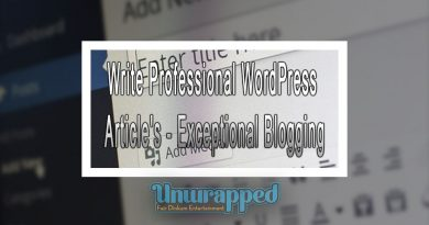 Write Professional WordPress Article's - Exceptional Blogging