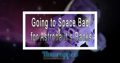 Going to Space Bad for Astronaut's Backs