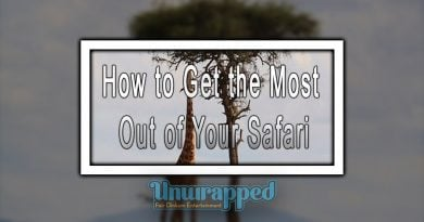 How to Get the Most Out of Your Safari