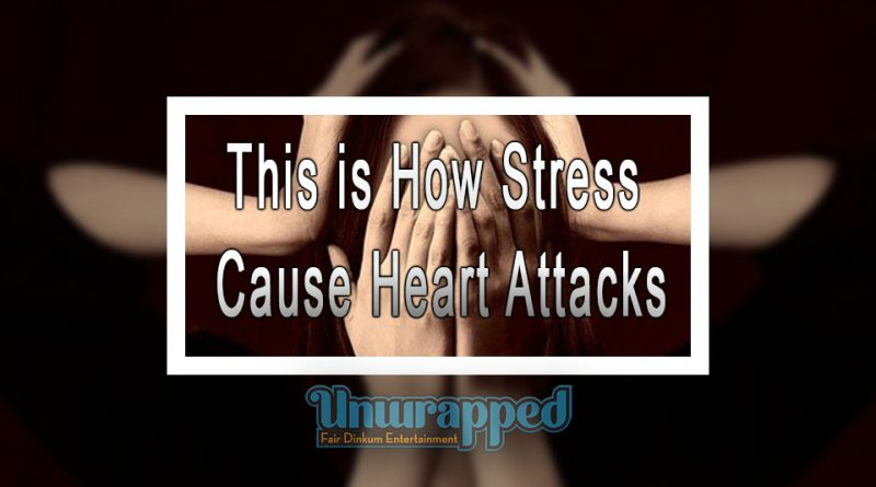 This is How Stress Cause Heart Attacks
