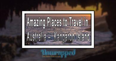 Amazing Places to Travel in Australia – Kangaroo Island