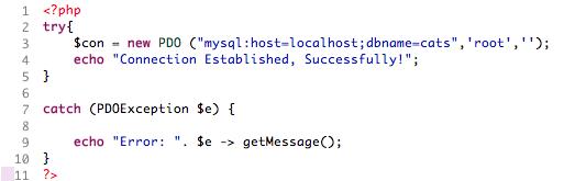 Basic PDO code