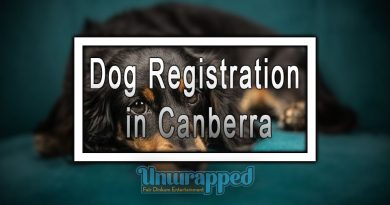 Dog Registration in Canberra