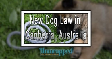 New Dog Law in Canberra, Australia