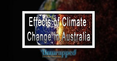 Effects оf Climate Chаngе in Australia