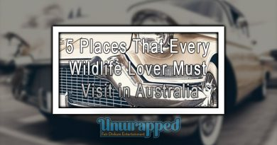 5 Places To Rent A Car In Australia For Foreign Travellers
