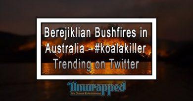 Berejiklian Bushfires in Australia - #koalakiller Trending on Twitter