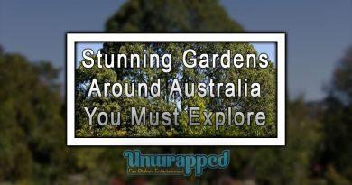 Stunning Gardens Around Australia You Must Explore