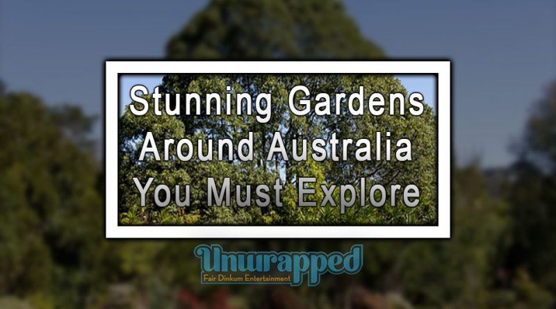 Stunning Gardens Around Australia You Must Explore