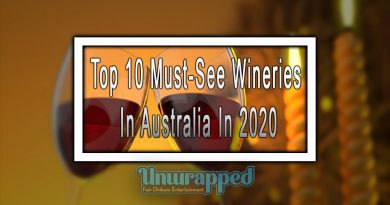Top 10 Must-See Wineries In Australia In 2020