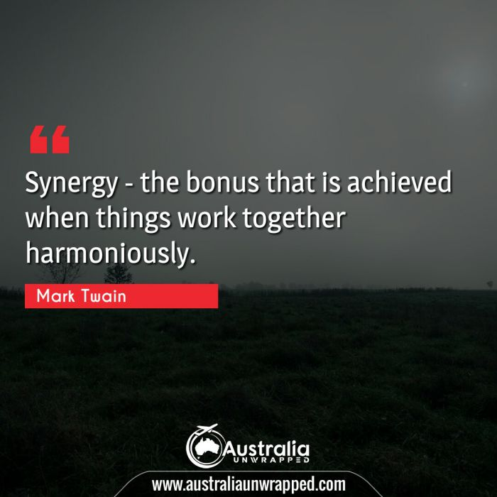 Synergy - the bonus that is achieved when things work together harmoniously.