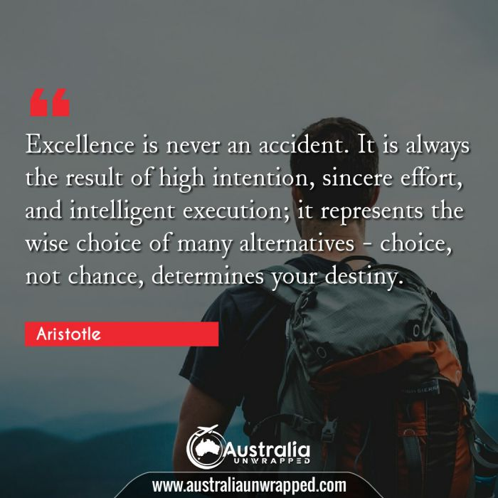 Excellence is never an accident. It is always the result of high intention, sincere effort, and intelligent execution; it represents the wise choice of many alternatives - choice, not chance, determines your destiny.