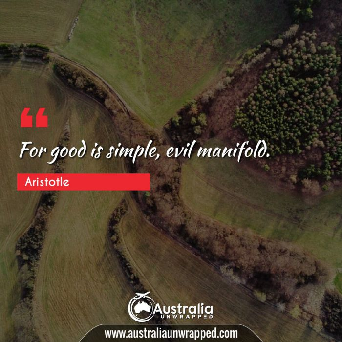 For good is simple, evil manifold.