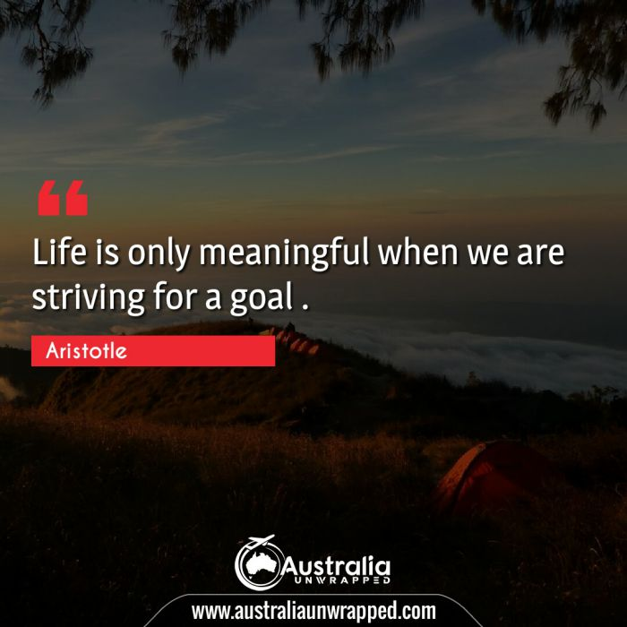 Life is only meaningful when we are striving for a goal .