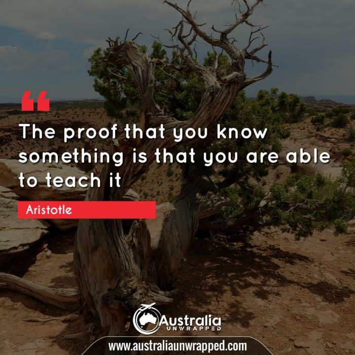 The proof that you know something is that you are able to teach it.