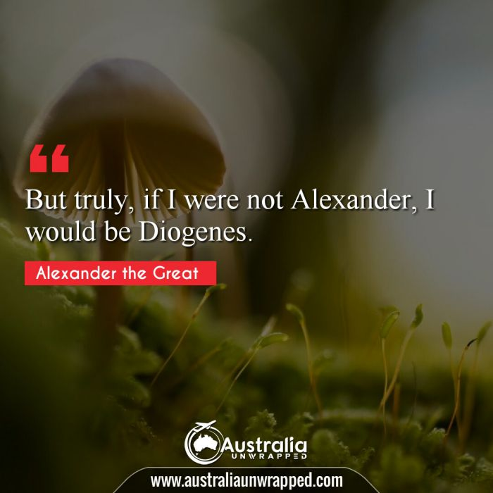 But truly, if I were not Alexander, I would be Diogenes.