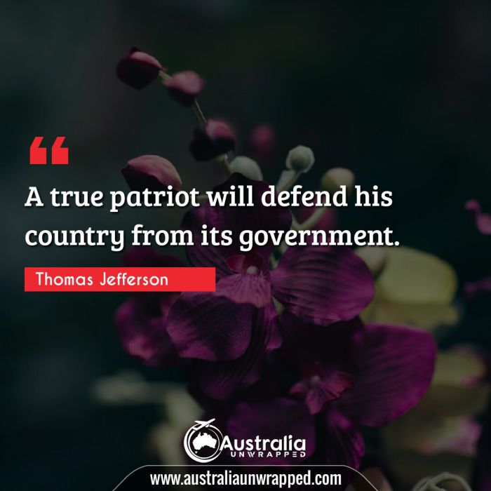 A true patriot will defend his country from its government.