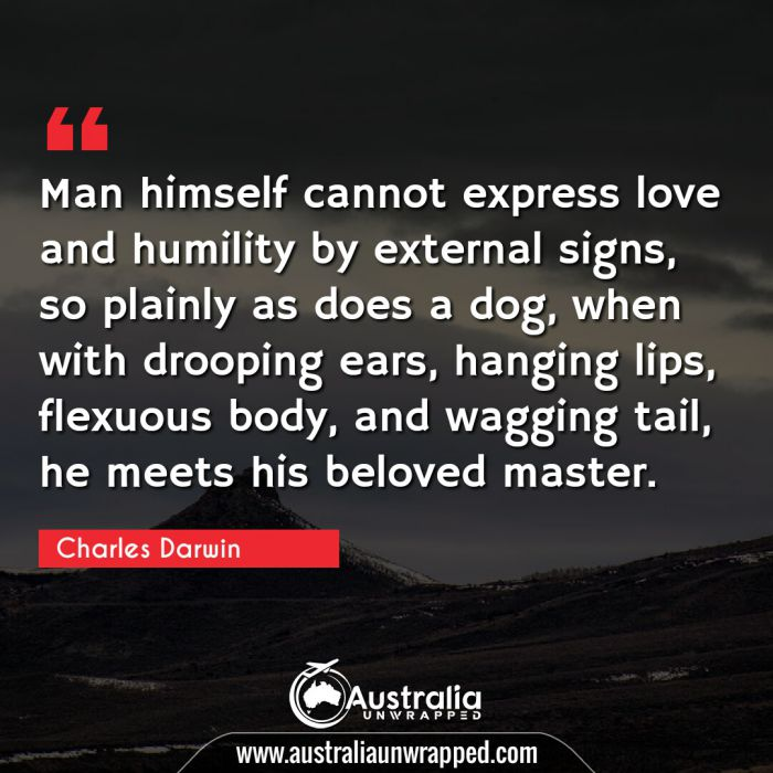 Man himself cannot express love and humility by external signs, so plainly as does a dog, when with drooping ears, hanging lips, flexuous body, and wagging tail, he meets his beloved master.