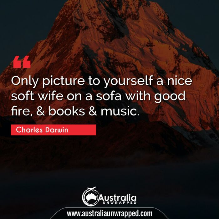 Only picture to yourself a nice soft wife on a sofa with good fire, & books & music.