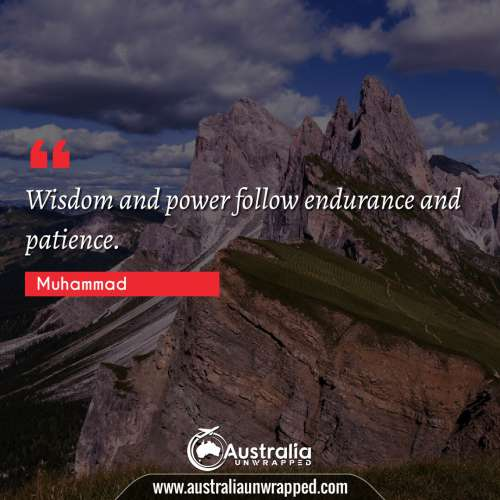 Wisdom and power follow endurance and patience.