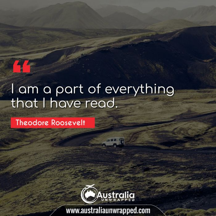 I am a part of everything that I have read.