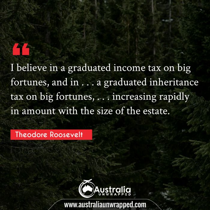I believe in a graduated income tax on big fortunes, and in . . . a graduated inheritance tax on big fortunes, . . . increasing rapidly in amount with the size of the estate.