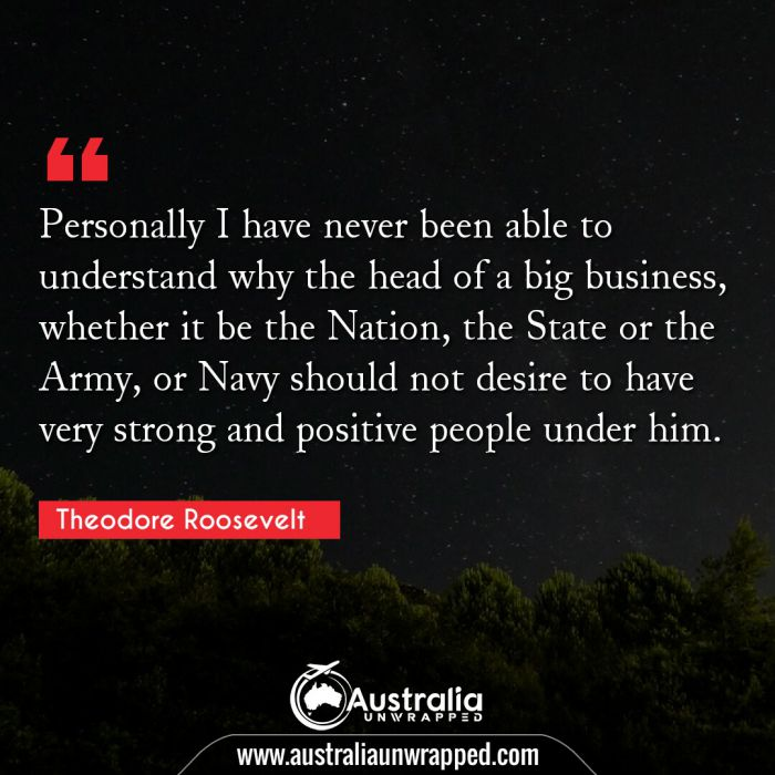 Personally I have never been able to understand why the head of a big business, whether it be the Nation, the State or the Army, or Navy should not desire to have very strong and positive people under him.