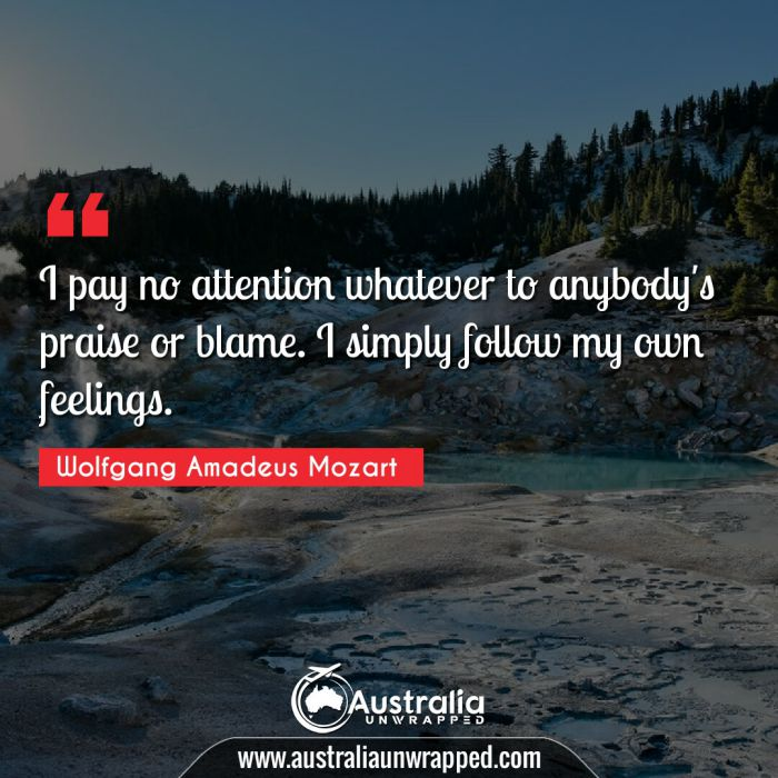 I pay no attention whatever to anybody's praise or blame. I simply follow my own feelings.