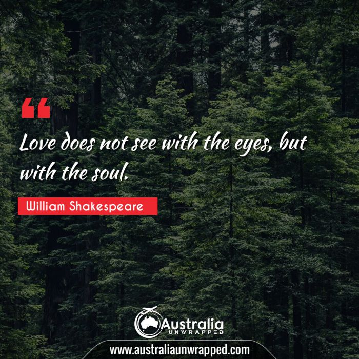 Love does not see with the eyes, but with the soul.