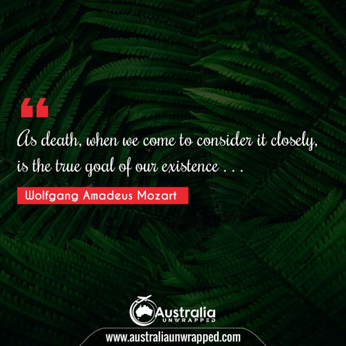 As death, when we come to consider it closely, is the true goal of our existence . . .
