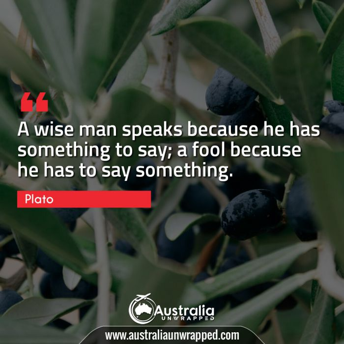 A wise man speaks because he has something to say; a fool because he has to say something.