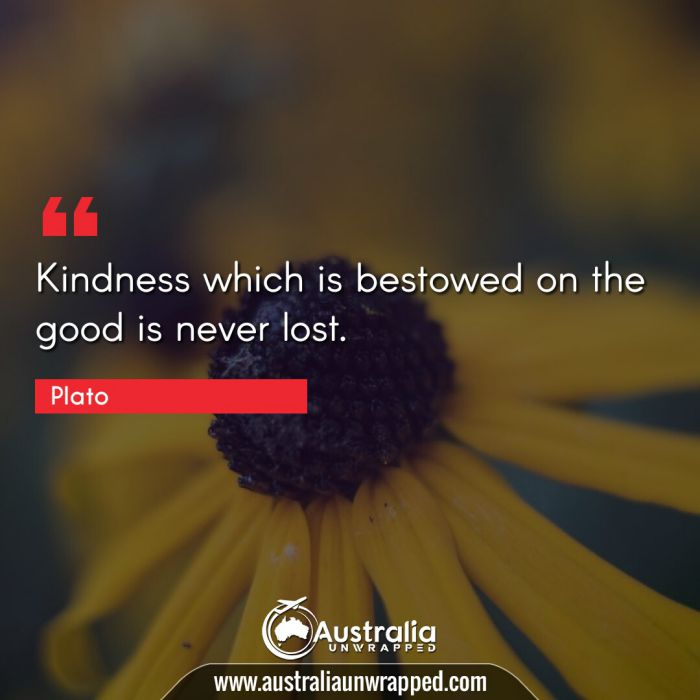 Kindness which is bestowed on the good is never lost.